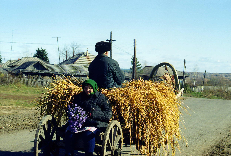 Деревня Окунево Омской области — аномальная зона?