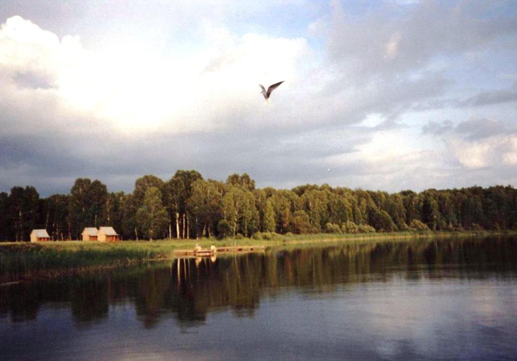 озеро Щучье Омской области